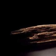 香文化:玩沉香有什么意思,玩沉香乐趣在哪里?