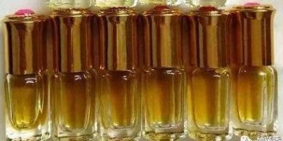 沉香知识:沉香油和沉香油脂一样吗?什么是沉香油?什么是沉香油脂?