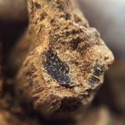 红土沉香:什么是红土沉香?香中舍利红土沉香是什么味道
