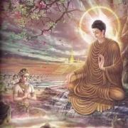 佛学文化:33张图片诠释释迦牟尼佛的一生,了解佛陀有助于更好地认识佛法智慧